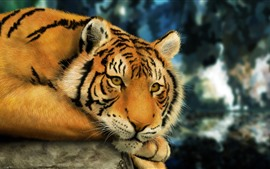 Preview wallpaper Tiger rest, art picture