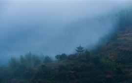 Árboles, montañas, pabellón, niebla, mañana, China.