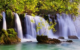 Waterfalls, twigs, green leaves, water