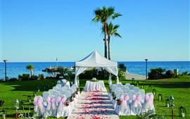 Свадебные украшения, стулья, лепестки роз, пальмы
