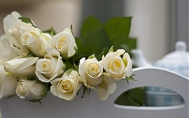 Roses blanches, brumeuses