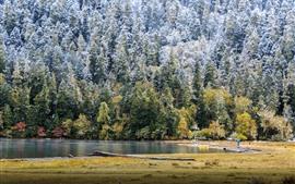 Vorschau des Hintergrundbilder Winter, Bäume, Schnee, See, kalt