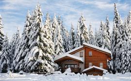 Invierno, casa de madera, nieve gruesa, árboles