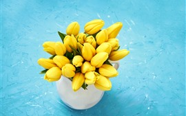 Tulipanes amarillos, fondo azul