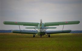 Antonov An-2 plano, vista posterior, tierra