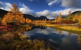 Hermoso otoño, árboles, lago, montañas, Rusia