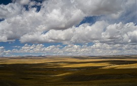 Beautiful grassland, clouds, sky, shadow, Tibet, China