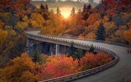 Puente, camino, arboles, puesta de sol, otoño