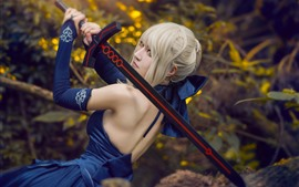 Preview wallpaper Cosplay girl, white hair, sword, back view