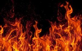 Fuego, llama, chispas, fondo negro.