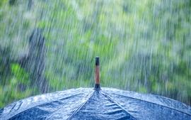 Chuva pesada, guarda-chuva