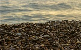 Много булыжников, море