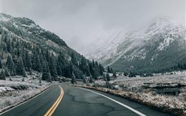 Montanhas, neve, árvores, estrada, névoa