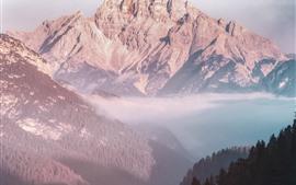 Paisaje de la naturaleza, montañas, Valle, bosque, niebla