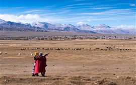 Preview wallpaper Pamirs, mountains, sheep, blue sky