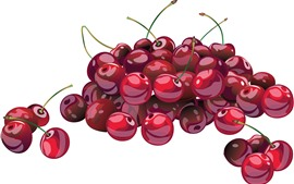 Cerezas rojas, fondo blanco, cuadro vectorial
