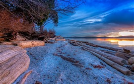 Aperçu fond d'écran Rivière, rivage, arbres, coucher de soleil