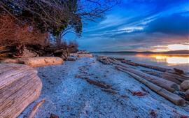 River, shore, trees, sunset