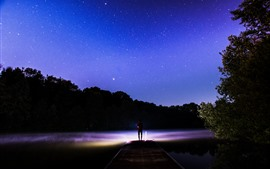 Звездное, небо, ночь, озеро, пирс, человек, деревья