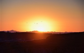 Nascer do sol, montanhas, vôo de pássaros, céu