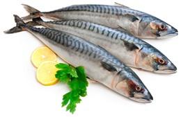 Tres pescados, rebanada del limón, fondo blanco