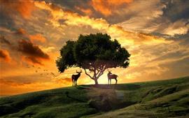 Árbol, ciervos, colina, pájaros, puesta de sol, nubes, diseño creativo
