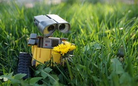 Preview wallpaper Wall-E, robot, yellow flower