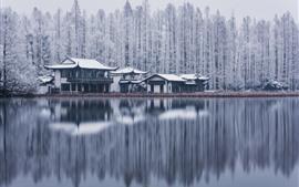 Lago Oeste, Hangzhou, árvores, edifícios, neve, inverno, China