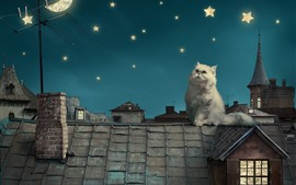 Preview wallpaper White cat, roof, moon, stars, creative picture