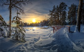Preview wallpaper Winter, thick snow, bridge, lake, trees, sunset