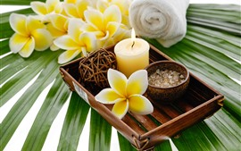 Preview wallpaper Yellow flowers, plumeria, candle, SPA
