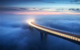 Bridge, fog, clouds, light lines, height, morning