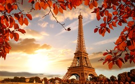 Preview wallpaper Eiffel Tower, red leaves, twigs, autumn