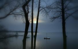 湖、桟橋、木、日の出、霧、朝