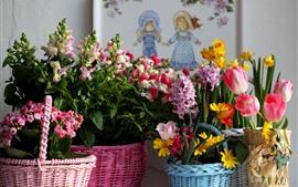 Muitos tipos de flores coloridas
