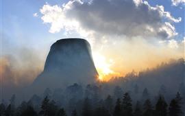 Manhã, nevoeiro, montanha, floresta, céu, raios de sol, nuvens