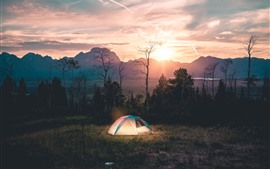 Morning, tent, trees, river, fog, sunrise