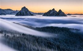 Montañas, niebla, bosque, árboles, alpes, paisaje natural.