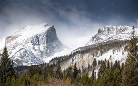 Preview wallpaper Mountains, snow, trees, winter, nature landscape