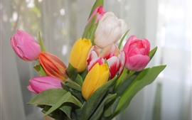 Preview wallpaper Pink, white, yellow tulips, bouquet