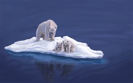 Preview wallpaper Polar bears, snow island, art picture