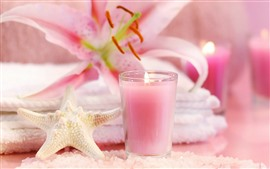 Preview wallpaper Starfish, candle, pink lily, SPA theme