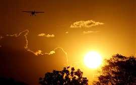 Sunset, sun, glare, trees, clouds, plane