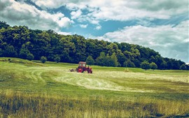 Trees, grass, fields, tractor, clouds, green