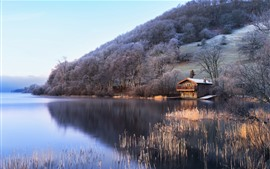 UK, England, lake, trees, hut, slope