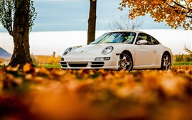 Preview wallpaper White Porsche 911 car, autumn leaves