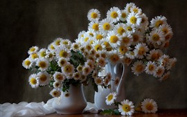 Preview wallpaper White chamomile, bouquet, vase