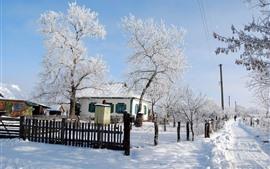 Inverno, neve, árvores, estrada, casas, vila