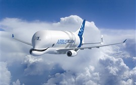 Preview wallpaper Airbus Beluga, A300-600ST Super Transporter