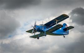 Biplano azul, céu, vôo